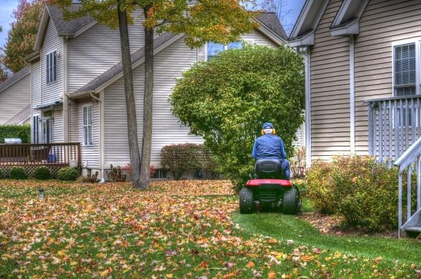 Should I Rake My Leaves 4 Seasons Landscaping Plus