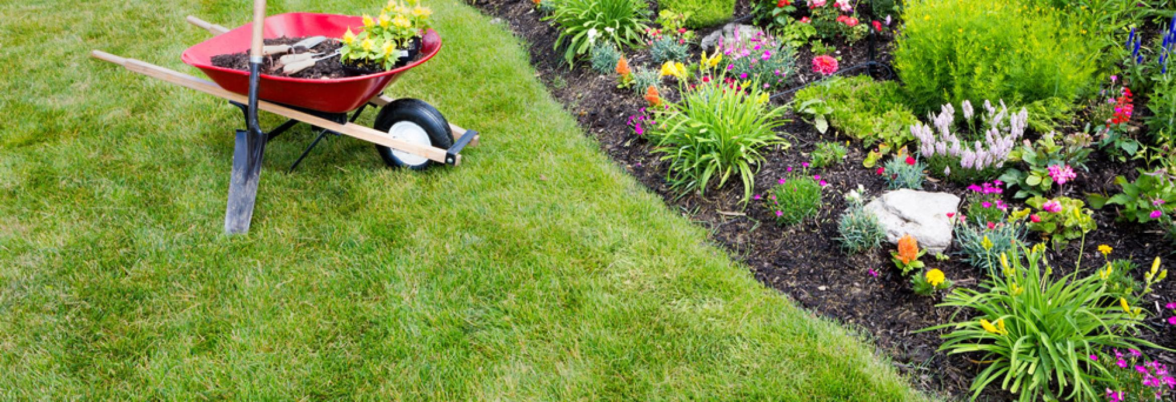 4 Seasons Landscaping Plus   Yorkville landscaping Company